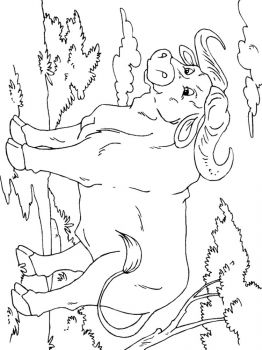 Buffalo-coloring-pages-14