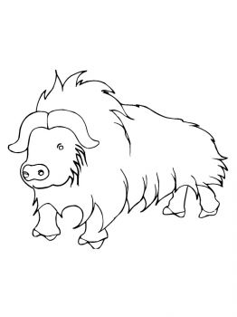 Buffalo-coloring-pages-5
