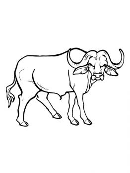 Buffalo-coloring-pages-8