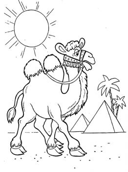 Camel-coloring-pages-12
