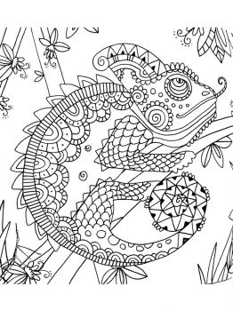 Chameleon-coloring-pages-1
