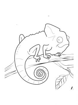 Chameleon-coloring-pages-10
