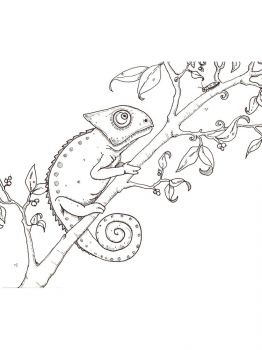 Chameleon-coloring-pages-16
