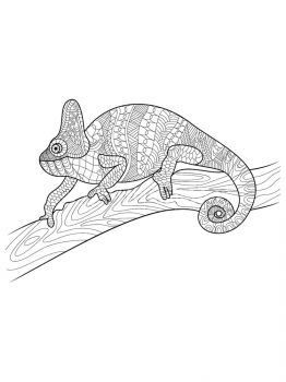 Chameleon-coloring-pages-29