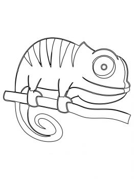 Chameleon-coloring-pages-3