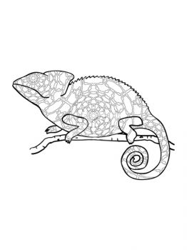 Chameleon-coloring-pages-31
