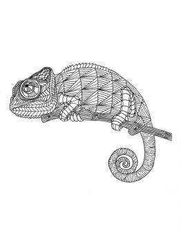 Chameleon-coloring-pages-5