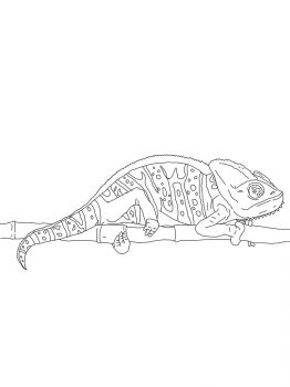 Chameleon-coloring-pages-8