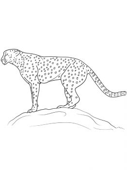 Cheetah-coloring-pages-3