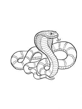 Cobra-coloring-pages-14