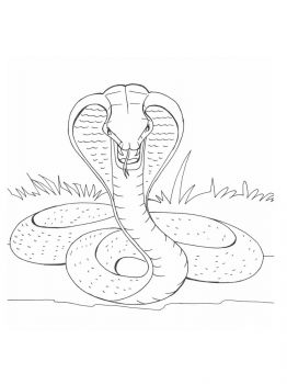 Cobra-coloring-pages-19