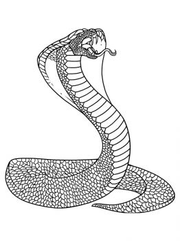 Cobra-coloring-pages-9