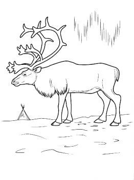 Deer-animal-coloring-pages-335