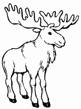 Deer-animal-coloring-pages-336