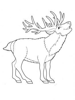 Deer-animal-coloring-pages-339