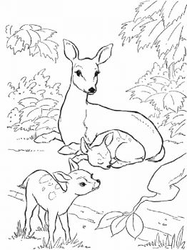 Deer-animal-coloring-pages-340