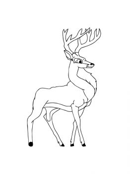 Deer-coloring-pages-5
