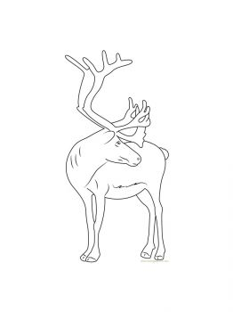Deer-coloring-pages-6