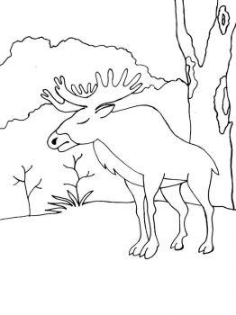 Elk-coloring-pages-11