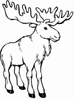 Elk-coloring-pages-7