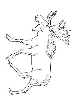 Elk-coloring-pages-8
