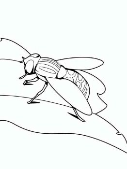 Fly-coloring-pages-20