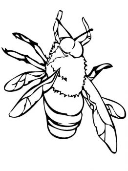 Fly-coloring-pages-26