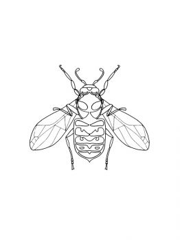 Fly-coloring-pages-4