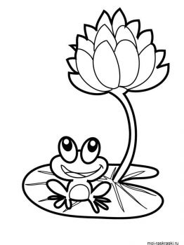 Frog-coloring-pages-21