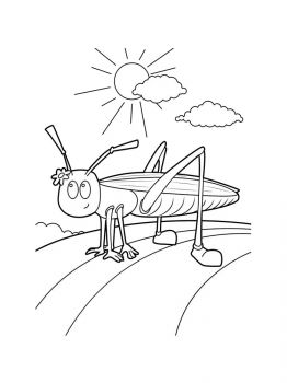 Grasshopper-coloring-pages-15