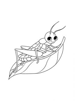 Grasshopper-coloring-pages-3
