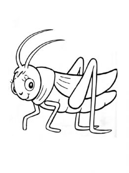 Grasshopper-coloring-pages-31