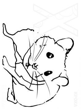 Hamster-animal-coloring-pages-335