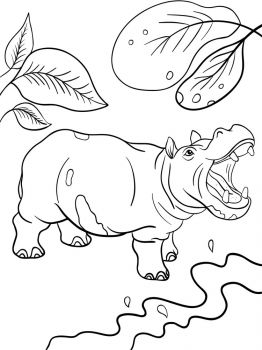 Hippopotamus-animal-coloring-pages-347