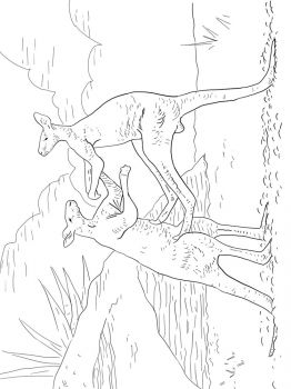 Kangaroo-animal-coloring-pages-343