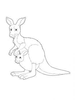 Kangaroo-coloring-pages-7