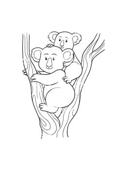 Koala-coloring-pages-11