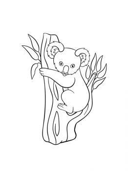 Koala-coloring-pages-12