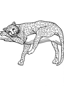 Leopard-coloring-pages-1