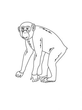 Monkey-coloring-pages-8