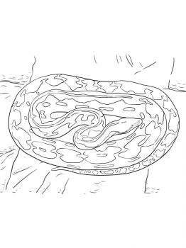 Python-coloring-pages-2