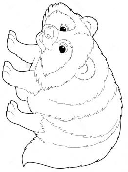 Raccoon-animal-coloring-pages-339