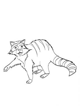 Raccoon-coloring-pages-20