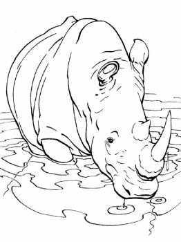 Rhino-animal-coloring-pages-338