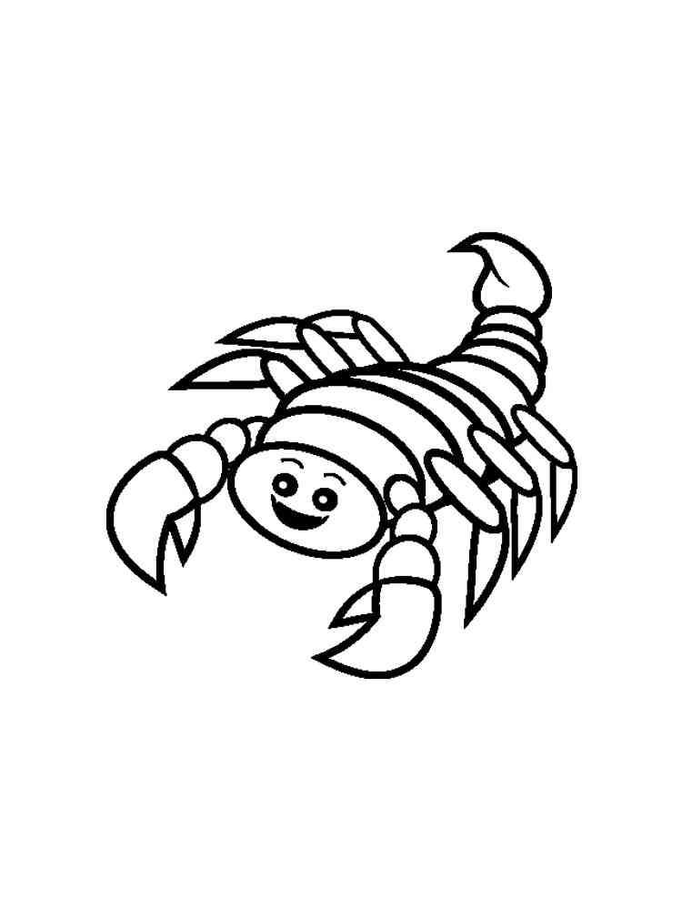 ausmalbilder skorpion  malvorlagen kostenlos zum ausdrucken