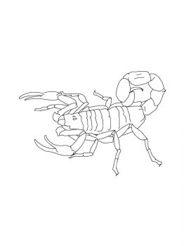 Scorpio-coloring-pages-10