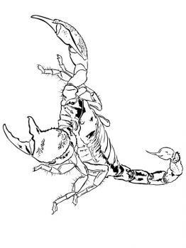Scorpio-coloring-pages-14