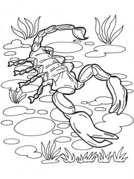 Scorpio-coloring-pages-16