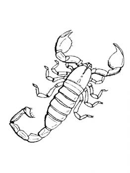 Scorpio-coloring-pages-21