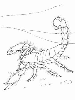 Scorpio-coloring-pages-23